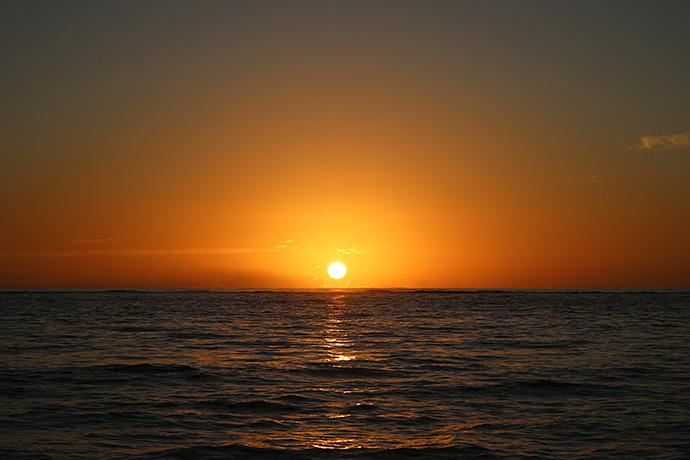 太陽が昇りました