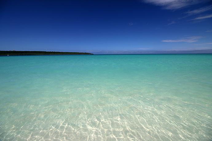 海も透き通ってる