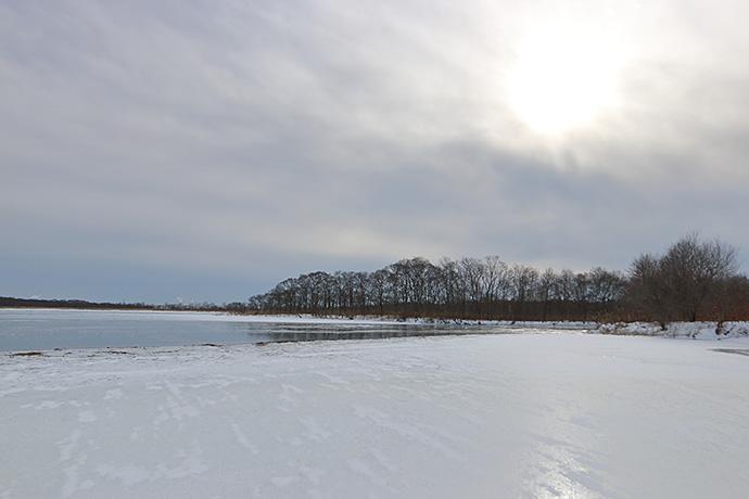 湖面が凍ったウトナイ湖
