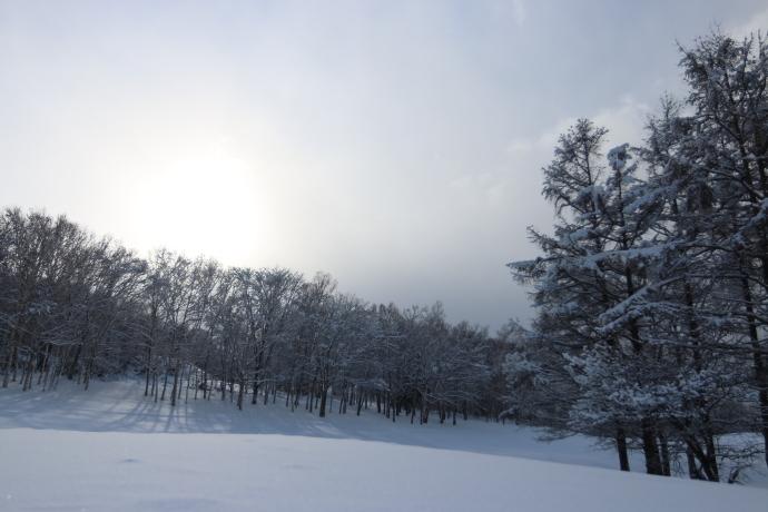 北広島のスキー場